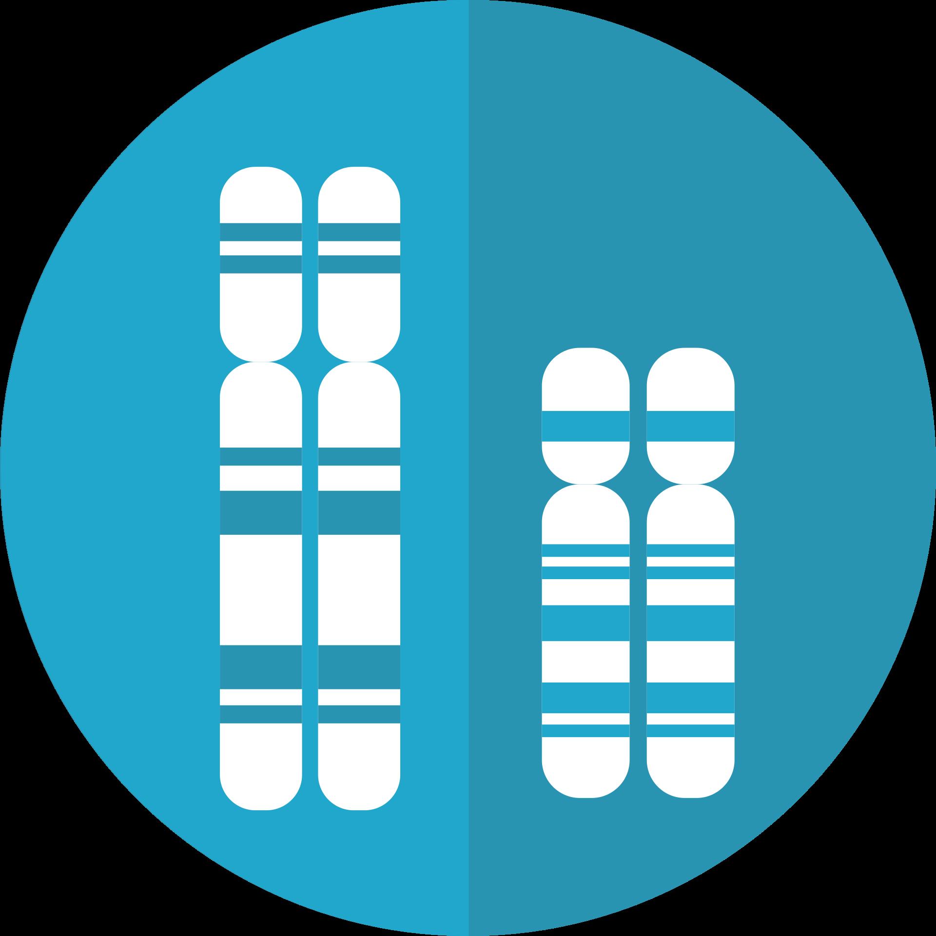 Mutacje i choroby genetyczne